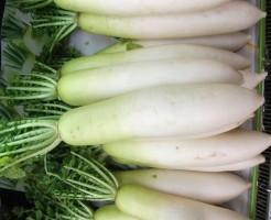 大根の保存方法と賞味期限