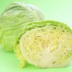 キャベツの冷凍保存方法と賞味期限!期間と選び方や栄養と効能